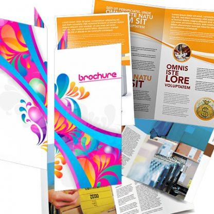 ANPTprint Brochures